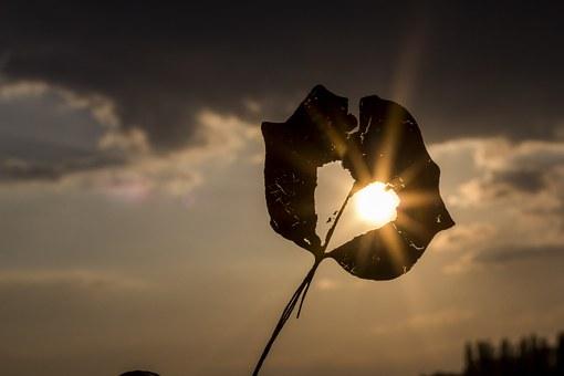 sun-622740__340