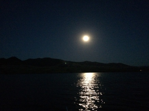 nightmoonpic