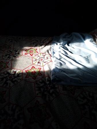shadowbedpic