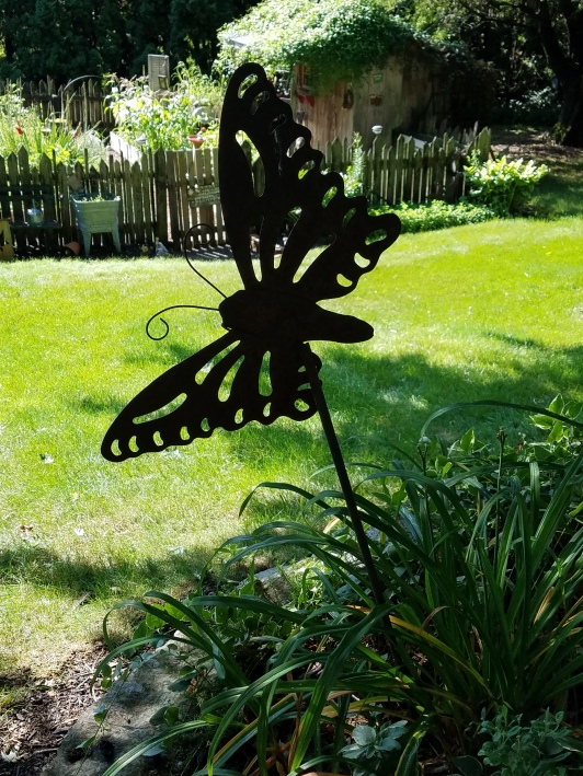 1825butterflypic