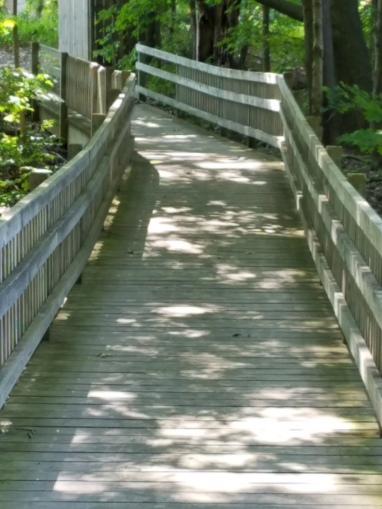 walkwaypic