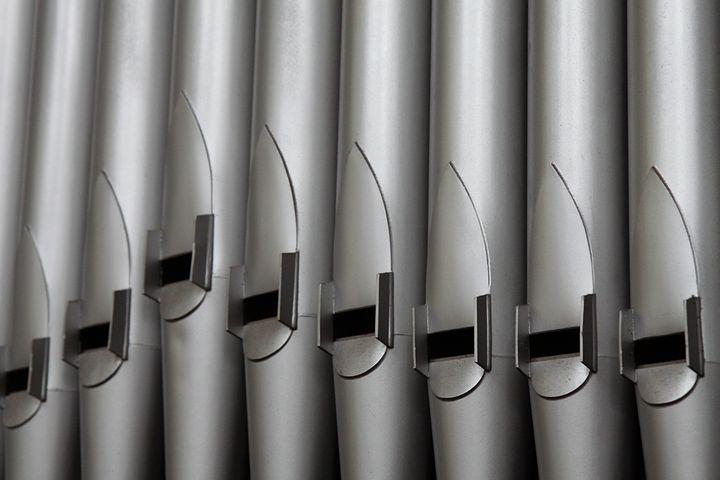 organpic
