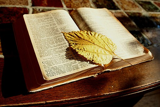 bibleleaf