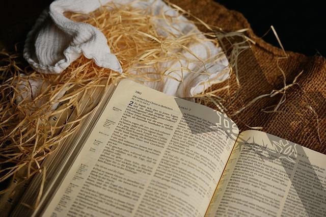 biblenew