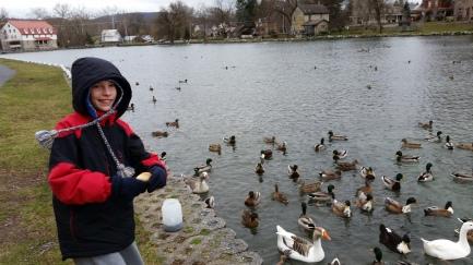 duckb