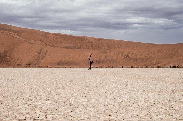 desertdry